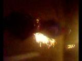 15.08.2013 призрачные гоньщики, пуща-водица